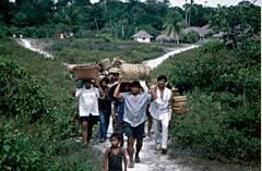 transporte  da aldeia